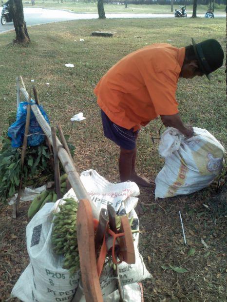 Penjual sayur dan pisang